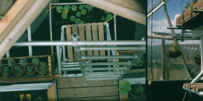 PlantsDome.001